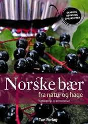 Norske bær
